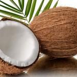 Kokos – dla kogo, na co i dlaczego warto włączyć go do jadłospisu.